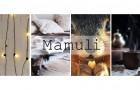 Mamuli – Halle
